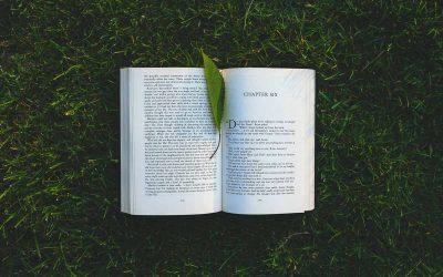 Día 6 | El libro que promete enseñar a perdonar